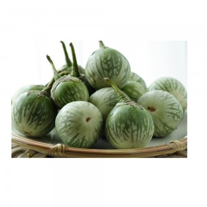 Eggplant Green Round, Oman, Per Kg