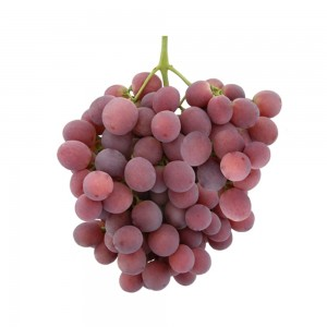 Grape Red Globe, South Africa, Per Kg