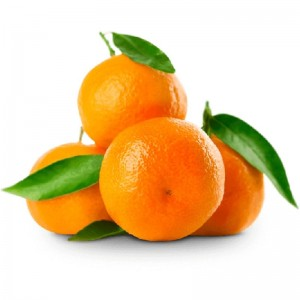 Mandarine, Egypt, Per Kg