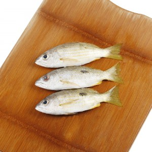 Naissar Fish, Per Kg, Uae