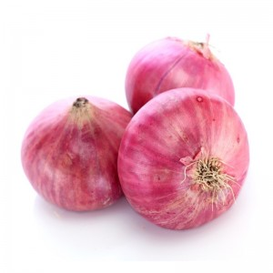 Onion, India, 4KG bag