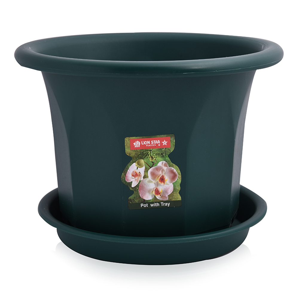Lion Star Pot with Tray - Green