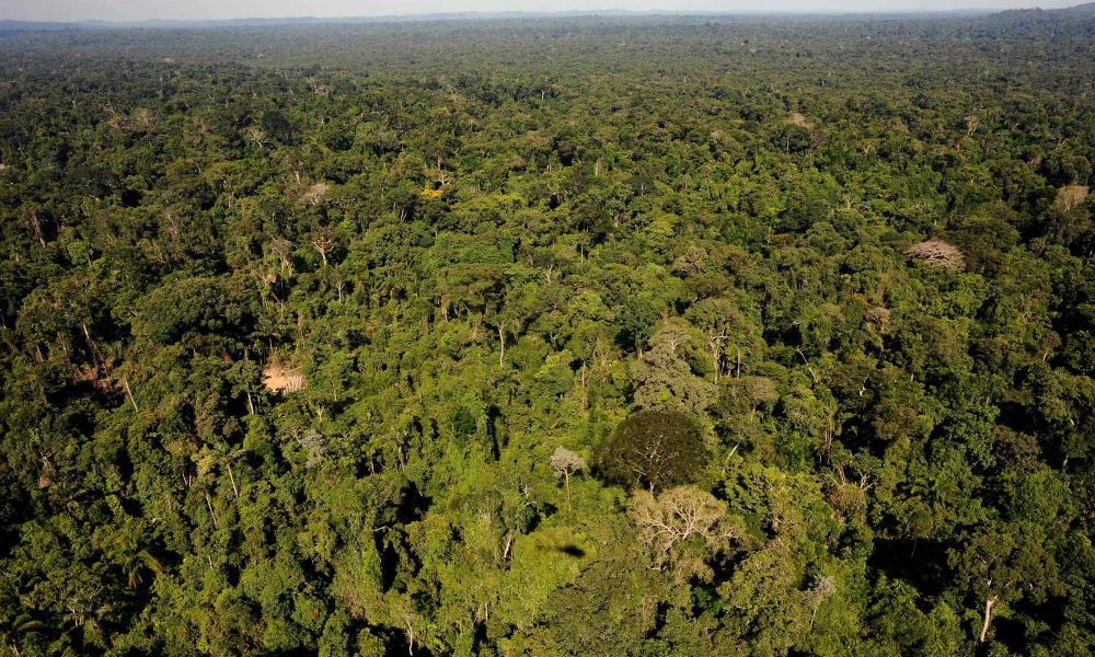 An aerial view of the Amazonic forest reserve of Trairao, western Para state, northern Brazil