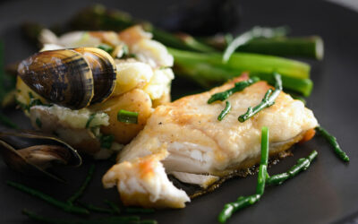 Halibut with moules mariniere