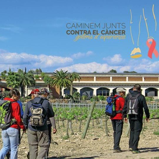 La Fundació Vallformosa i el CEP organitzen una caminada solidària contra el càncer