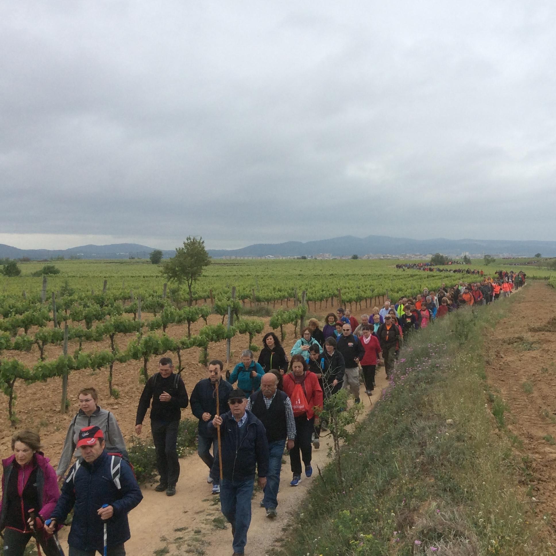 Un miler de persones, a la Caminada Solidària contra el càncer de la Fundació Vallformosa i el CEP
