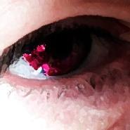 Seekats avatar