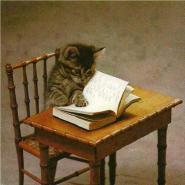 fastreader