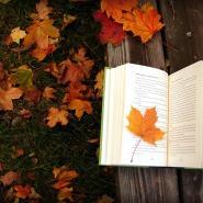 doodle_books