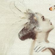 Farfallanna