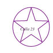 calla23