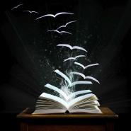 readernumbertwothousandsixteen