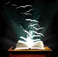 Anja_book