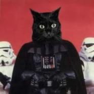 Vader1071