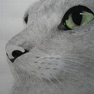 Carriecat