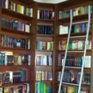 Bücherhamster