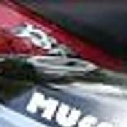muff99