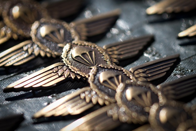 photograph picture of paratroopers medal