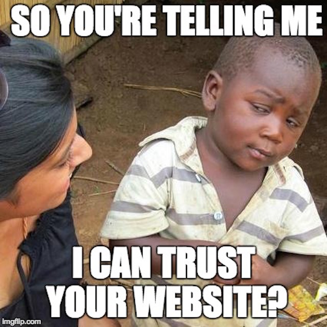 kid looks sceptical about website credibility