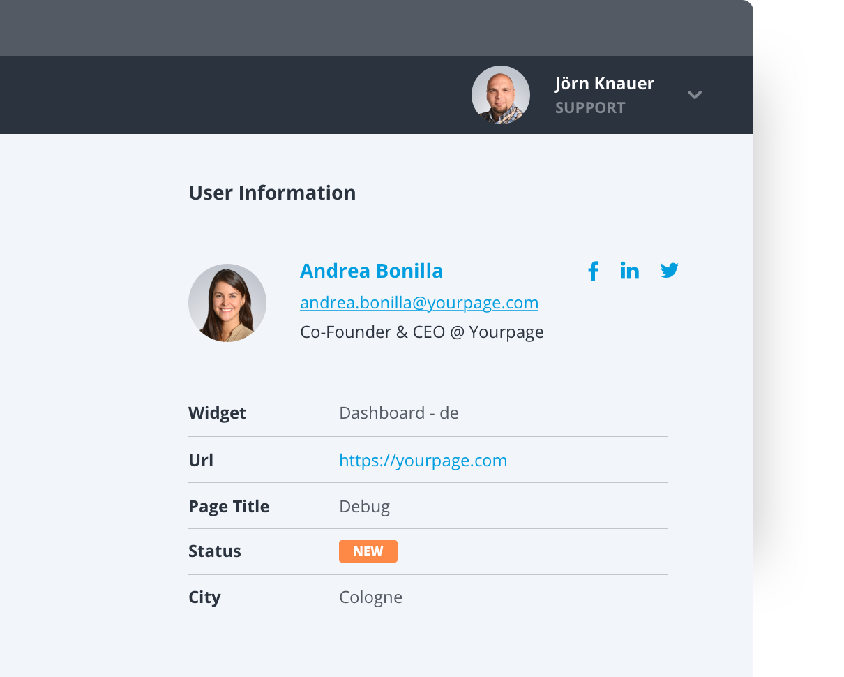 Customer profile in Userlike's Chat Panel.