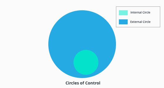 infographic of the circles of control.