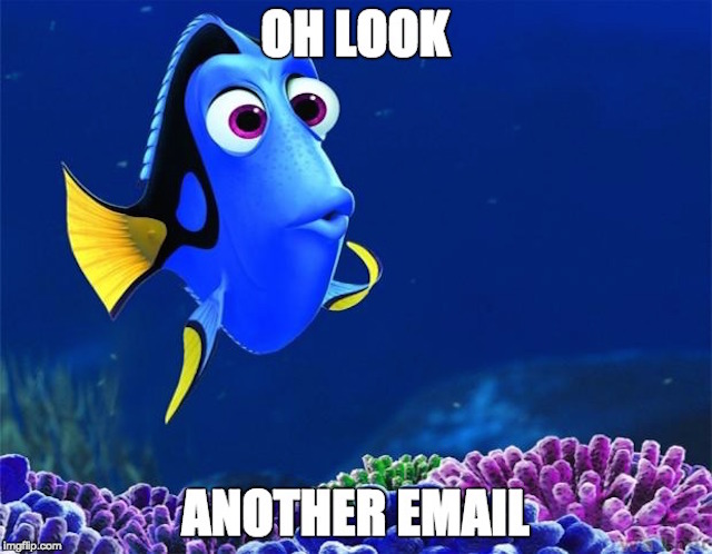 Dory the fish from Finding Nemo getting distracted by a new email