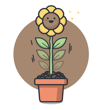Bild einer Sonnenblume.