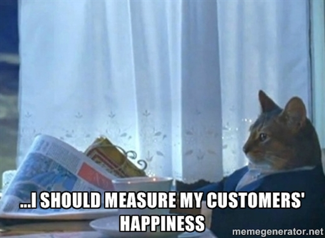 Meme of cat thinking about measuring customer satisfaction and creating customer loyalty.