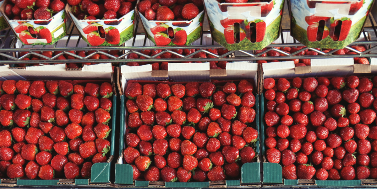 photograph picture of strawberries in boxes