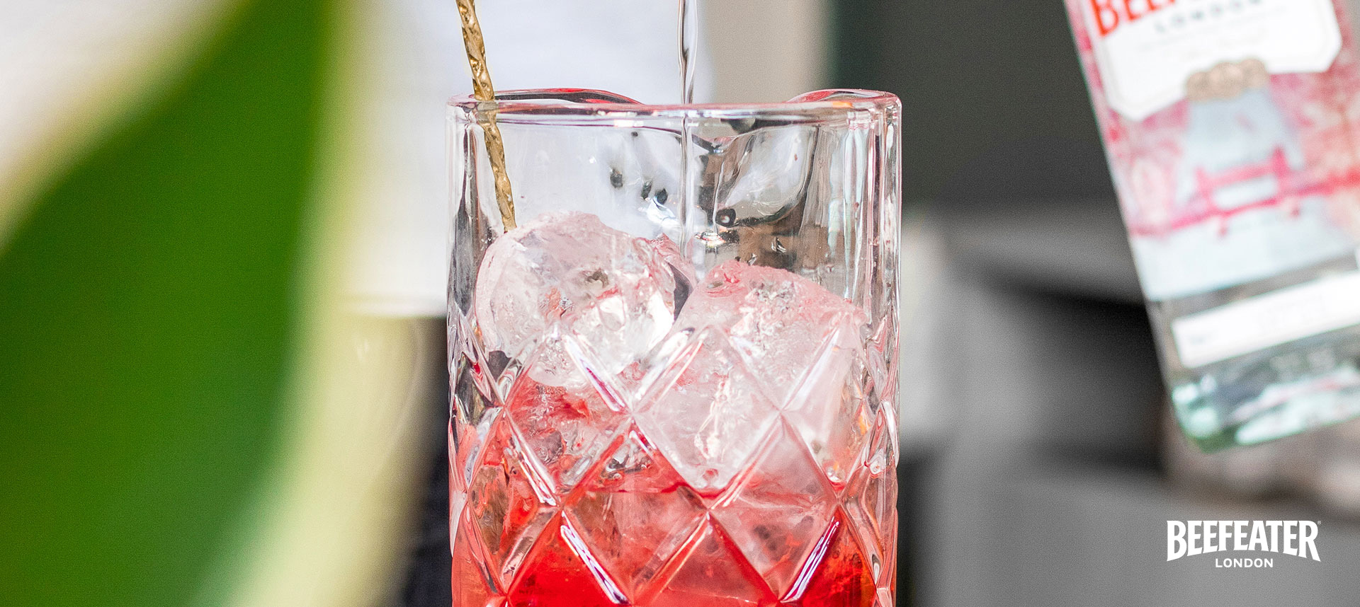 Everything you need to know about negronis