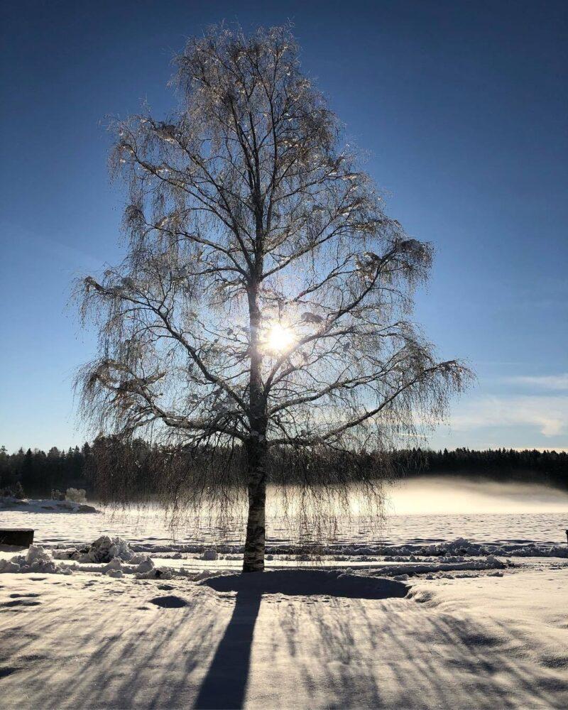 Fotograf: Elisabeth Flesjø