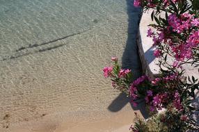 Rab-sziget négy legszebb strandja