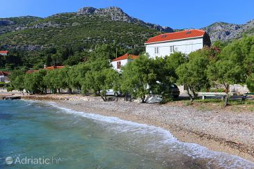 Property Viganj (Pelješac) - Accommodation 10140 - Apartments near sea with pebble beach.