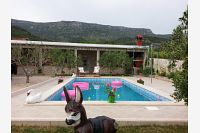 Holiday house with a swimming pool Bol (Brač) - 11016