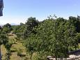 Terrace - view - Apartment A-11141-a - Apartments Velić (Zagora) - 11141