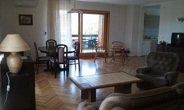 Apartment A-11242-b - Apartments and Rooms Novigrad (Novigrad) - 11242