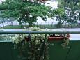 Vranjic, Balcony - view u smještaju tipa apartment, WIFI.