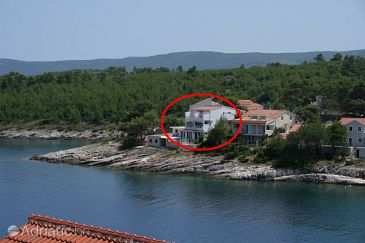 Property Basina (Hvar) - Accommodation 2074 - Apartments near sea.