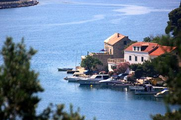 Property Zaton Mali (Dubrovnik) - Accommodation 2109 - Apartments near sea.