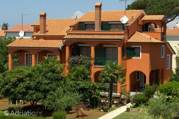Property Novigrad (Novigrad) - Accommodation 2540 - Apartments with pebble beach.