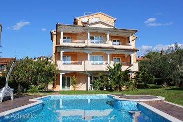 Property Novigrad (Novigrad) - Accommodation 2546 - Apartments with pebble beach.