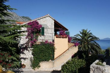 Property Igrane (Makarska) - Accommodation 2660 - Apartments with pebble beach.