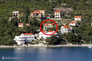 Property Slano (Dubrovnik) - Accommodation 2681 - Apartments and Rooms near sea with pebble beach.
