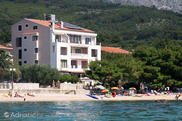 Tučepi, Makarska, Property 3057 - Rooms blizu mora with pebble beach.