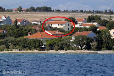 Property Petrčane (Zadar) - Accommodation 3288 - Apartments near sea with pebble beach.