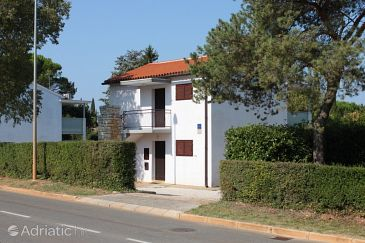 Property Dajla (Novigrad) - Accommodation 3371 - Apartments near sea with pebble beach.