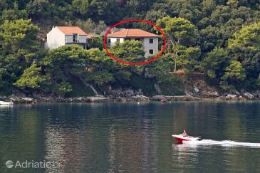 Property Ubli (Lastovo) - Accommodation 3463 - Apartments near sea.