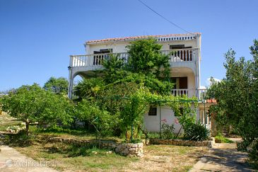 Property Novalja (Pag) - Accommodation 4103 - Apartments in Croatia.