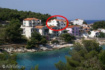 Property Bilo (Primošten) - Accommodation 4191 - Apartments near sea.