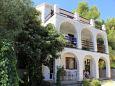 Apartments Lumbarda (Korčula) - 4375